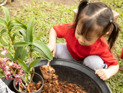 child helping with plant