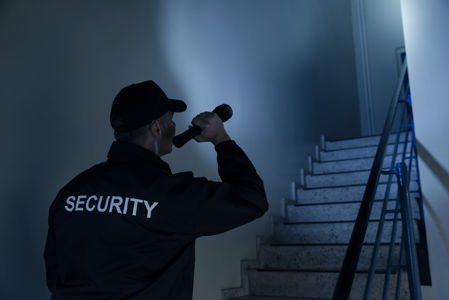 Picture for category Security Professional
