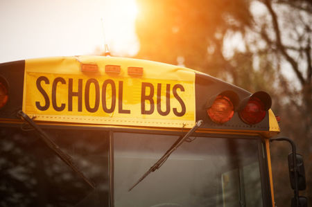 Picture for category School Bus Driver